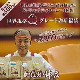 【計2kg(500g×4種)】[加藤珈琲店]世界規格Qグレー...