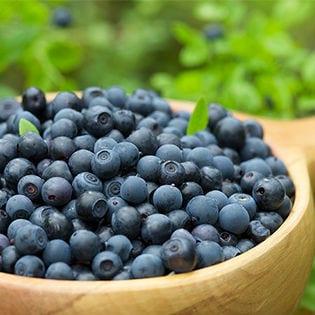 果実のキモチ わかさ生活のブルーベリーを使ったアイスギフト(A-BIR)
