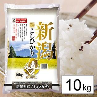 【10kg】29年産 新潟県産コシヒカリ