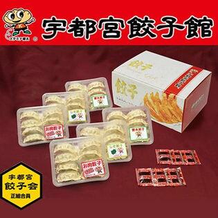 宇都宮餃子館 人気の3種セット