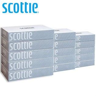 スコッティ/ティッシュペーパー 200組 (5箱×12パック)