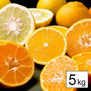 【5kg】愛媛県産柑橘ファミリーセット(詰め合わせ)※ご家庭用(若干の葉傷・コク点あり)