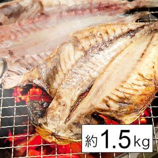 沼津干物セット 約1.5kg