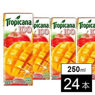 キリン トロピカーナ100% マンゴーブレンド LL250ml×24本
