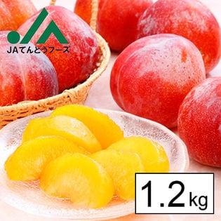 JA共選秀品山形県産プラム秋姫 約1.2kg