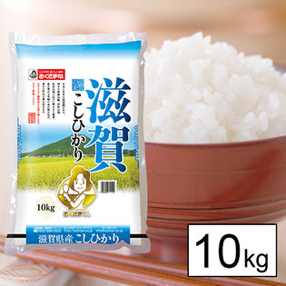 【10kg】30年産新米 滋賀県産こしひかり(おくさま印)