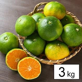 極早生 吉田みかん 3kg(家庭用)