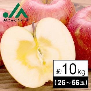 【予約受付】山形県産りんご 10kg(26~56玉入り 品種おまかせ) ※家庭用(傷あり)