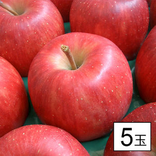 果物屋さんが選んだ旬の林檎(りんご)5玉