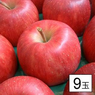 果物屋さんが選んだ旬の林檎(りんご)9玉