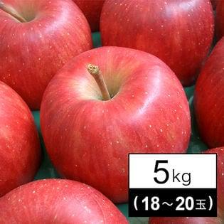 果物屋さんが選んだ旬の林檎(りんご)5kg箱(18-20玉)