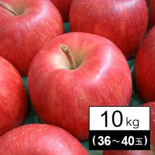 果物屋さんが選んだ旬の林檎(りんご)10kg箱(36-40玉)