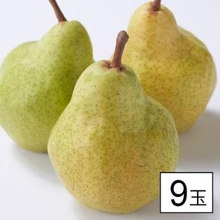 果物屋さんが選んだ旬の洋梨 9玉