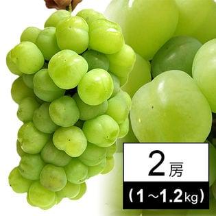 【予約受付】瀬戸ジャイアンツ 2房(1kg~1.2kg)