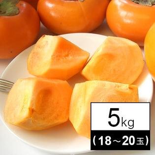 果物屋さんが選んだ九州産旬の柿 5kg(18-20玉)
