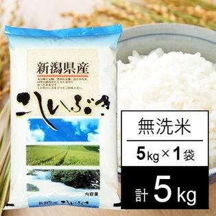 【5kg】 30年産新潟県産こしいぶき 白米(無洗米)5kg×1袋