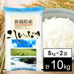 【10kg】 30年産新潟県産こしいぶき 白米5kg×2袋