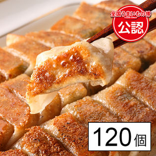 【福岡】博多うま馬 ひとくち餃子120個入