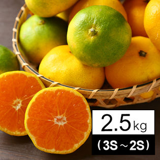 ちび玉吉田みかん 2.5kg(家庭用・3S~2Sサイズ込み)