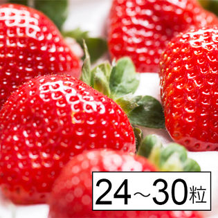 【福岡産】博多あまおう ギフト箱[24~30粒]