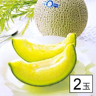 九州産 高級アールスメロン 2玉