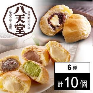 【広島】八天堂プレミアムフローズンくりーむパン・あんバター10個詰合せ