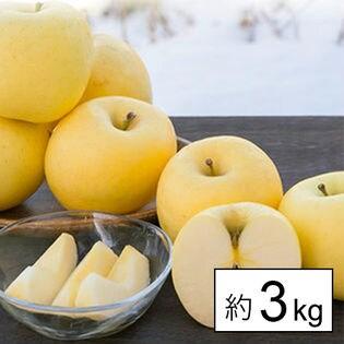 [約3kg]【糖度13度以上】山形県産りんご金将ふじ ※傷シミあり