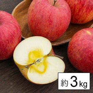 [約3kg]【糖度14度以上】山形県産りんご王将ふじ(玉数おまかせ) ※傷シミあり