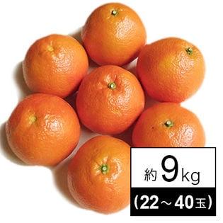 【予約受付】[9kg(22-40玉)]伊予柑