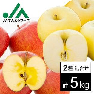 【約5kg】山形県産 王将ふじ&金将ふじセット(各10玉入り)