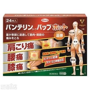 【第2類医薬品】バンテリンパップホット