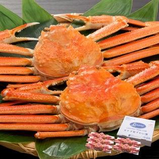 ボイル済ずわい蟹姿3kg(5杯入)
