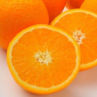 フルーツ屋さんが選んだネーブルオレンジ大30玉