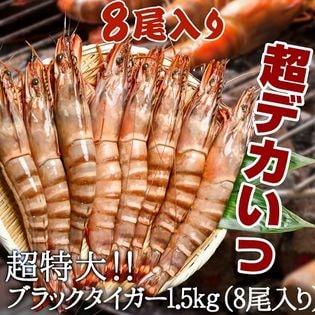 【1.5kg(8尾入り)】超特大ブラックタイガー