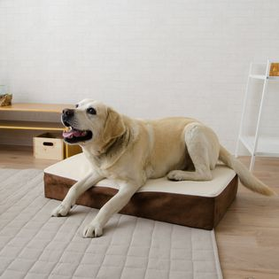 【Lサイズ/生成り×ブラウン】犬用 冷却ジェルウレタン入り 快適プレミアムベッド