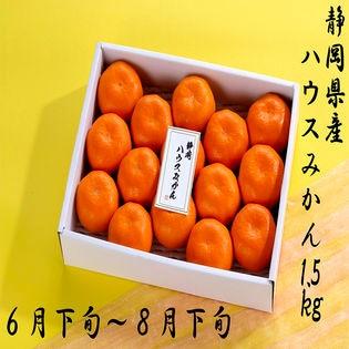 【1.5kg】静岡県産ハウスみかん