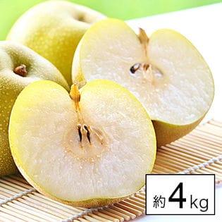 【約4kg】愛媛県産大豊作祝い梨《個数・品種はおまかせ》(傷あり・ご自宅用)