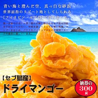 【300g】お試しドライマンゴー