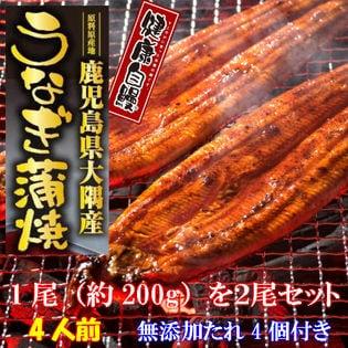【無添加 健康自鰻】鹿児島県大隅産 うなぎ蒲焼 特製たれ付
