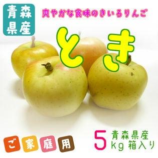 【予約】9/27~順次発送 【10kg】青森県産 特栽さんさ林檎 ご家庭用