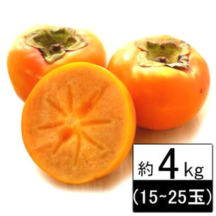 【約4kg(15~25玉)】 愛媛県産 柿 品種おまかせ(ご自宅用、傷あり)