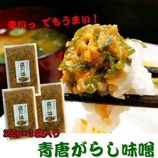 110円オフクーポン【250g×3袋】青唐がらし味噌