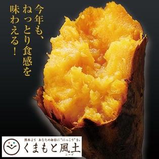 【1セット1kg】種子島産安納芋※家庭用(傷あり サイズ不揃い)
