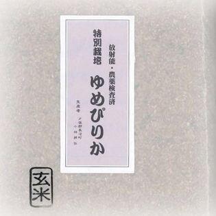 【10kg(5kg×2)】特別栽培 北海道産 ゆめぴりか 玄米