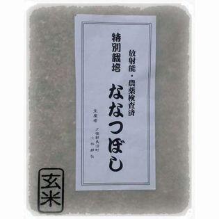 【10kg(5kg×2)】特別栽培 北海道産 ななつぼし 玄米
