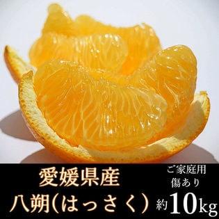 【約10kg】愛媛県産 はっさく(ご家庭用・傷あり)