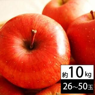【約10kg(26~50玉入り)】山形県産サンふじりんご ※ご家庭用
