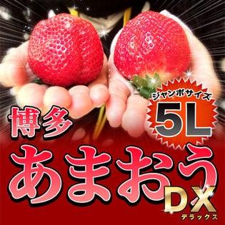【約1.08kg(4パック)】福岡県産あまおう※5Lサイズ