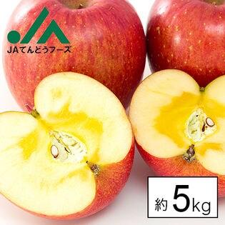【約5kg/糖度13度以上保証】山形県産サンふじりんご※傷シミあり