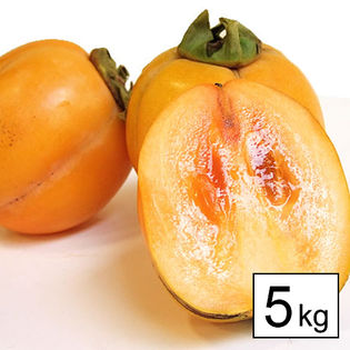 【予約受付】10/20~順次出荷【5kg】西条柿(鳥取・島根)